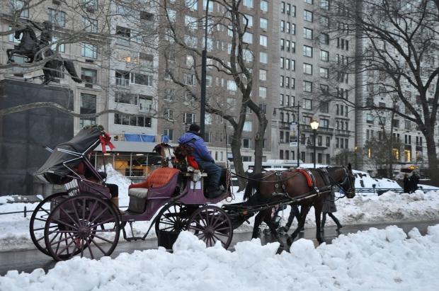 White Christmas in New York Central Park